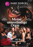 Meine unanstaendige Orgie DVD