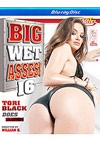 Big Wet Asses! 16 - Blu-ray Disc