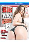 Big Wet Asses! 16 - Blu-ray Disc