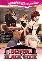 School Of Black Cock DVD