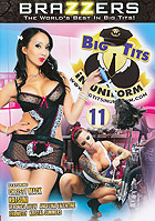 Big Tits In Uniform 11 DVD